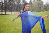 Neelam Upadhyay Hot pics in Blue saree-thumbnail-1