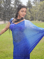 Neelam Upadhyay pics in Blue saree-cover-photo
