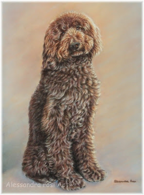 dog portrait artist, petp ortraits from photos