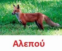 https://dl.dropboxusercontent.com/u/72794133/%CE%96%CE%A9%CE%91/fox2.wav