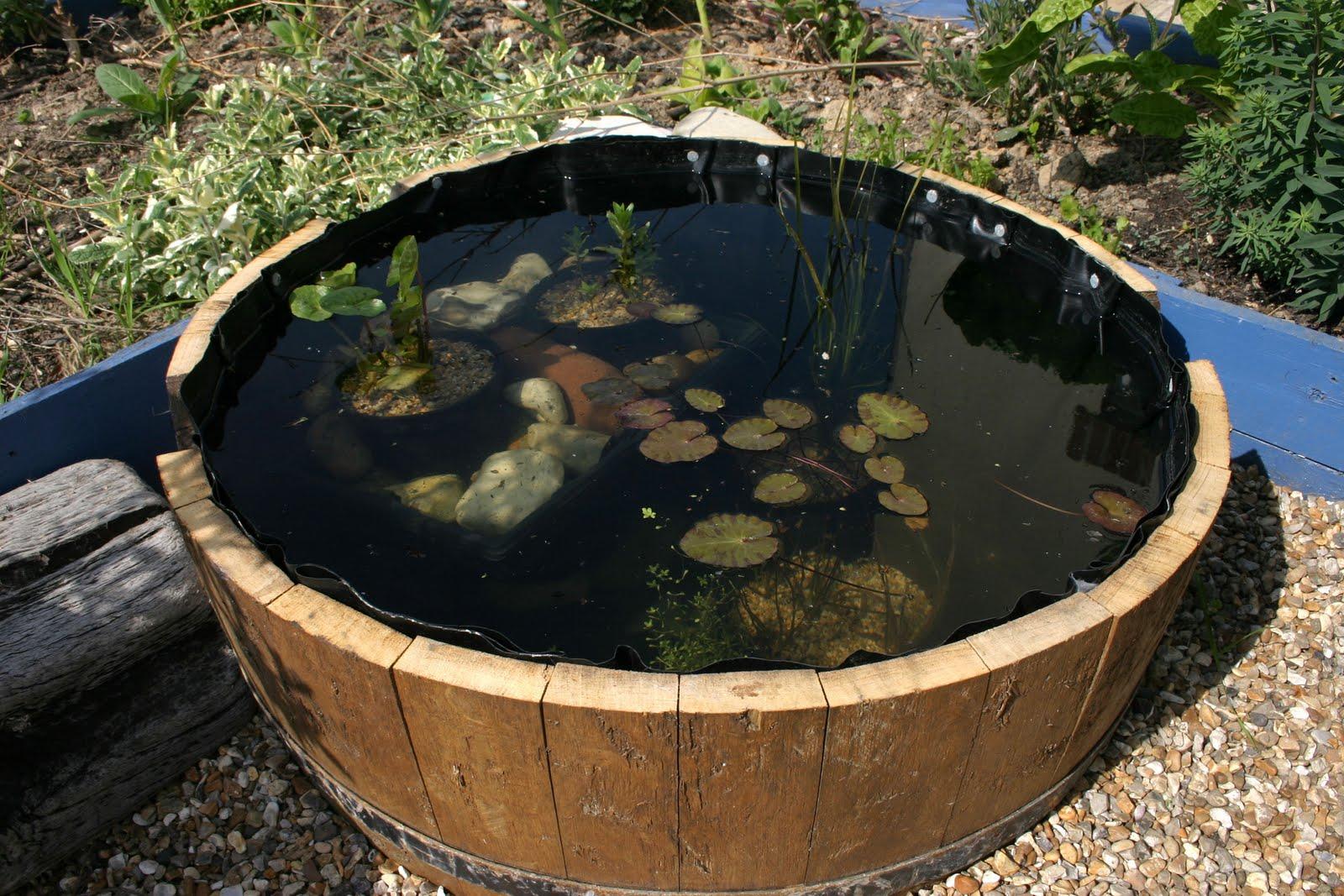 Great Little Minds Barrel Pond 23 04 2011