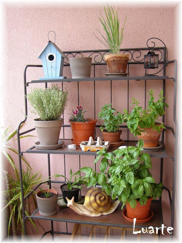Ideias debaixo do telhado um minif ndio na varanda 2 - Estantes para plantas ...