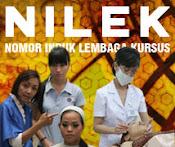 Smart Nilek