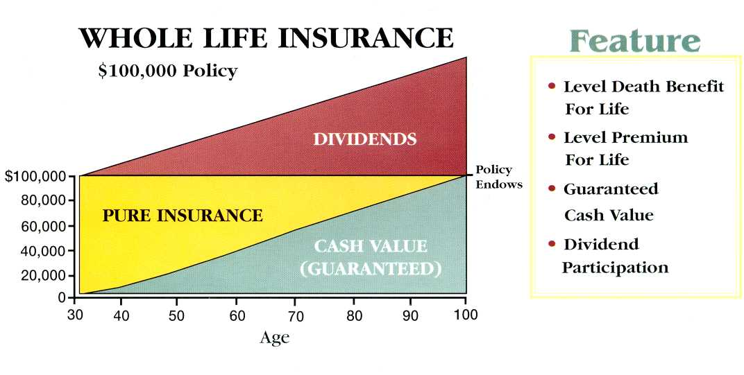 insurance company which company has the best whole life insurance