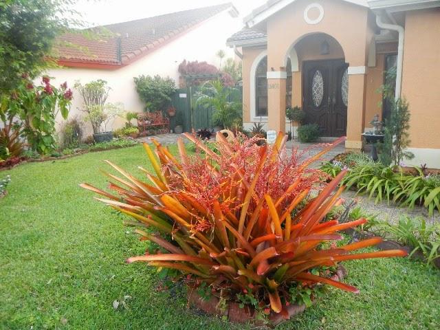 Foto Desain Taman Depan Rumah