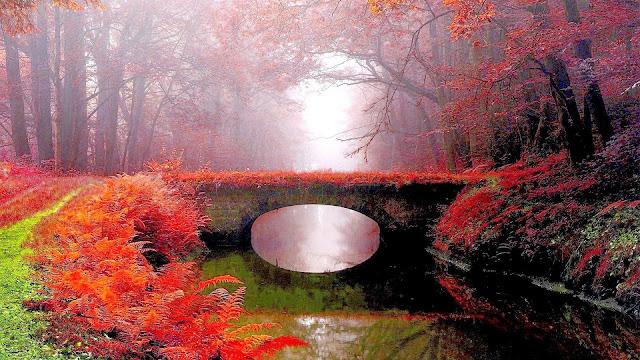 Foto hermosos paisajes natural puente sobre el rio