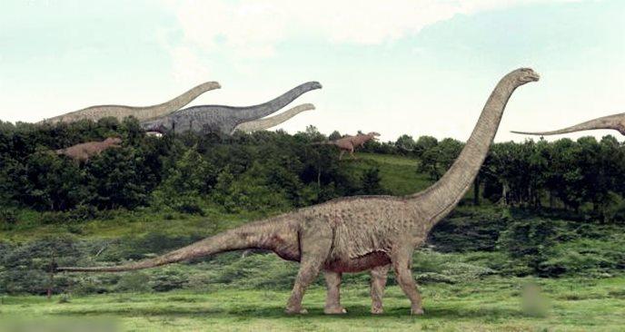 Gambar foto hewan purba terbesar di dunia yang pernah ada