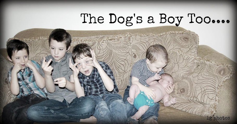 The Dog's a boy, too!