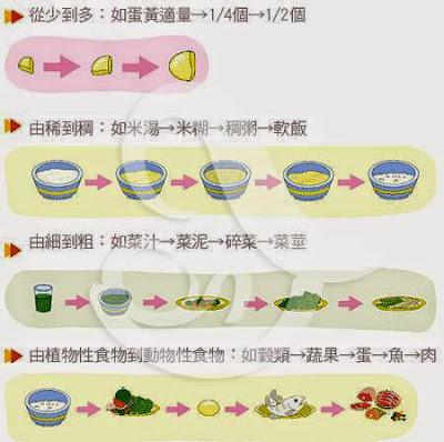 副食品怎麼給