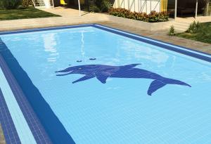 Swimming Pool Tiles: Renovate your swimming g pool tiles ...