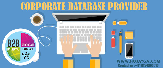Corporate Database Provider