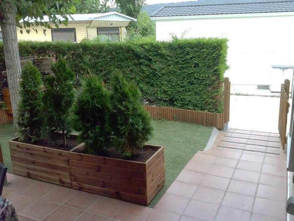 preciosas jardineras de xx altura con estos setos verdes y preciosos