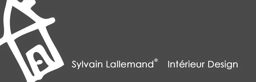 Sylvain Lallemand 06 21 93 71 63