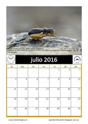 Julio 2016. Calendario AeE-GEV