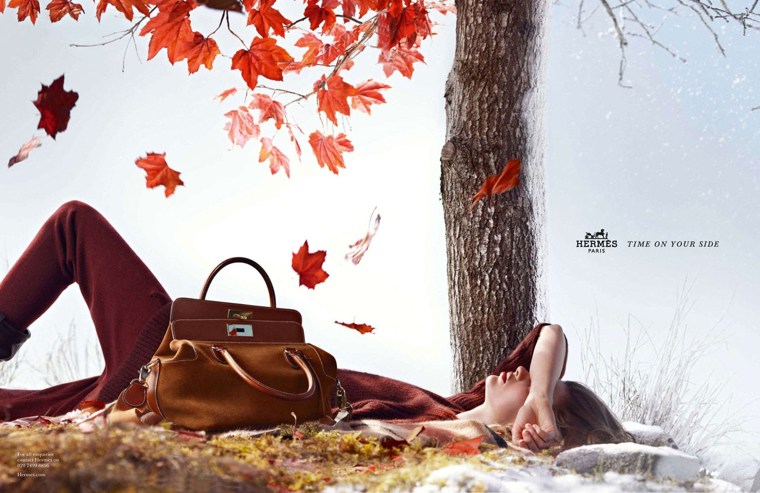 Bette Franke in Hermes Autumn/Winter 2012/13 campaign (photography: Nathaniel Goldberg)