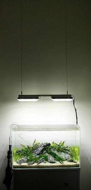 Aquarium Lighting For Planted Tanks Aquascape Aquarium