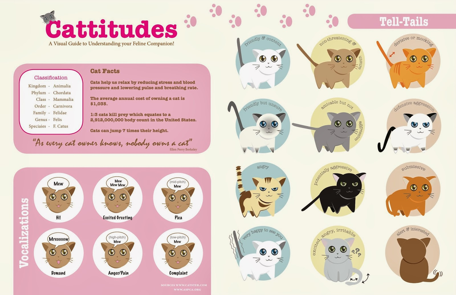 Today s Info graphic How cat behaves 3