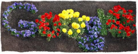 google-flora