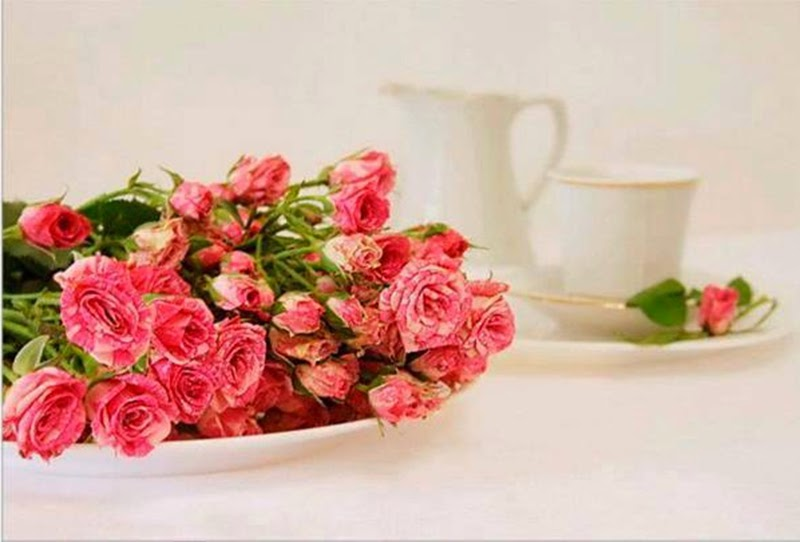 Best Free Roses Flowers Images Wallpapers Online Sharing By Email