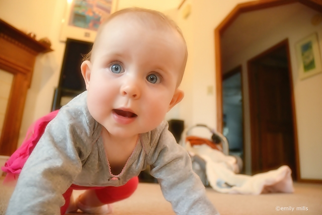 small cute babies wallpapers