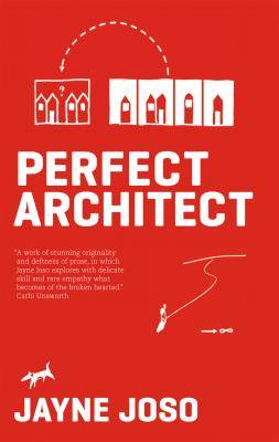 perfect architect by jayne joso, published by alcemi wales, front cover detail
