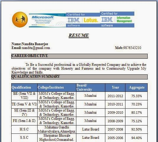 MCA Resume Format For Experience Download Company Resume – Mca Resume Format