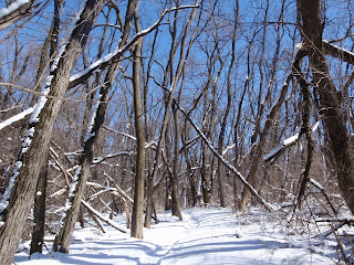 Winter on the trail - Ice Age Trail - Blue Spring Lake Segment