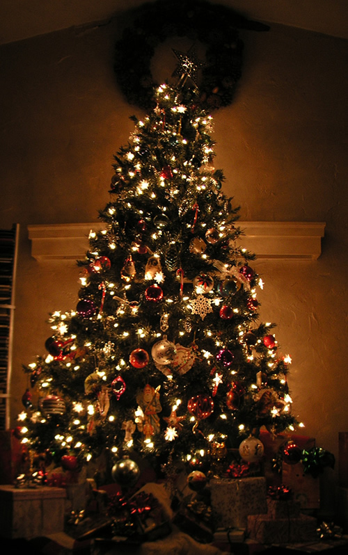 Another beautiful Christmas tree that was photographed in the shadows of