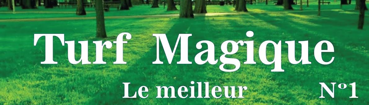 Turf Magique