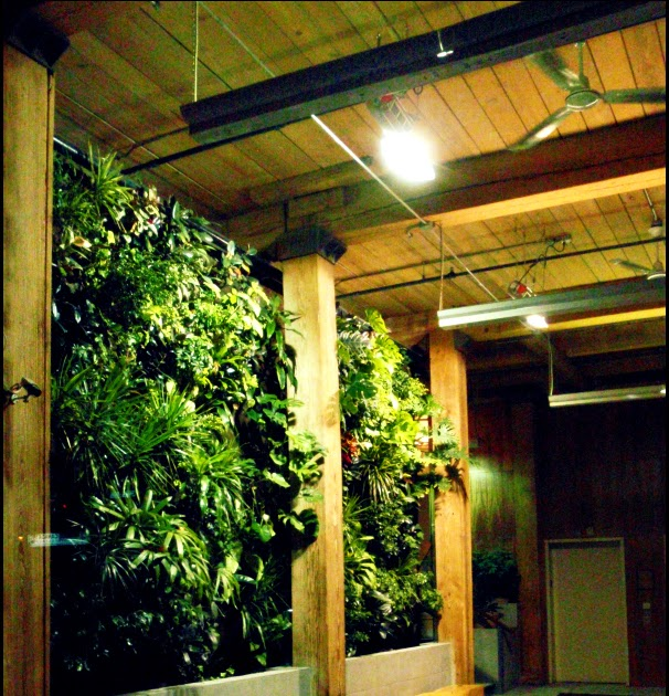 Perfect Living Wall Planter Toronto Motif - Wall Painting Ideas ...
