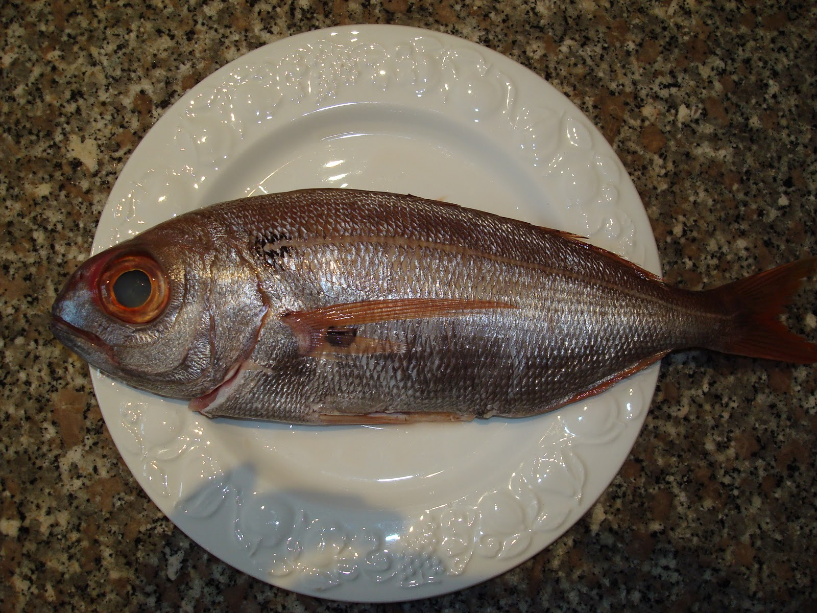 Red big eye fish recipes food fish recipes for Where to buy fish