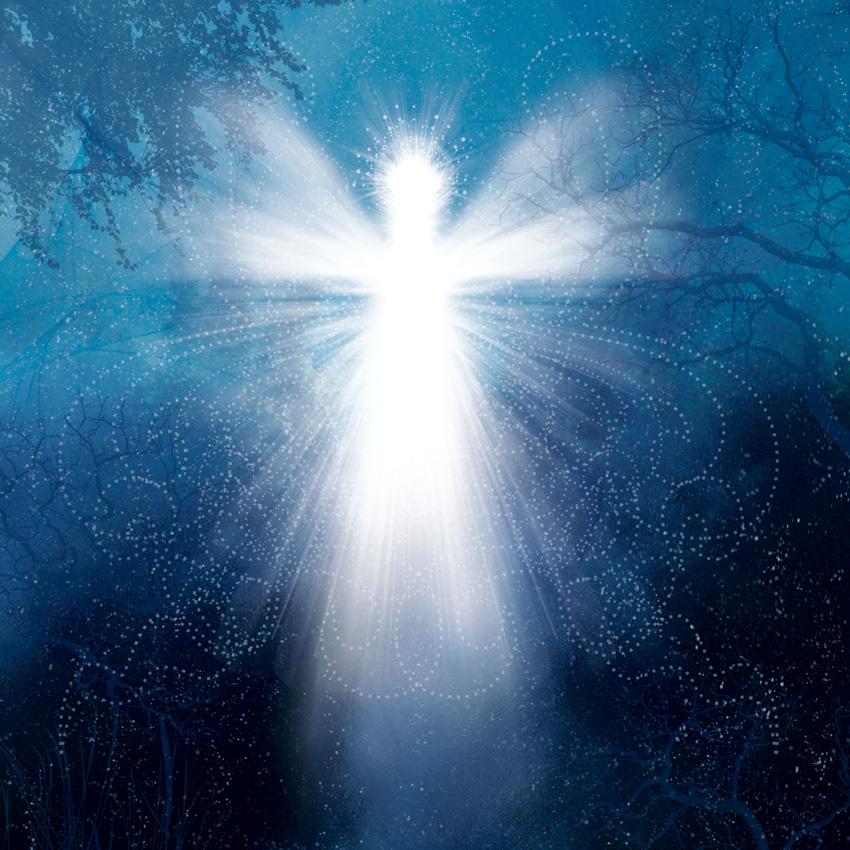 Mary jac s angels february