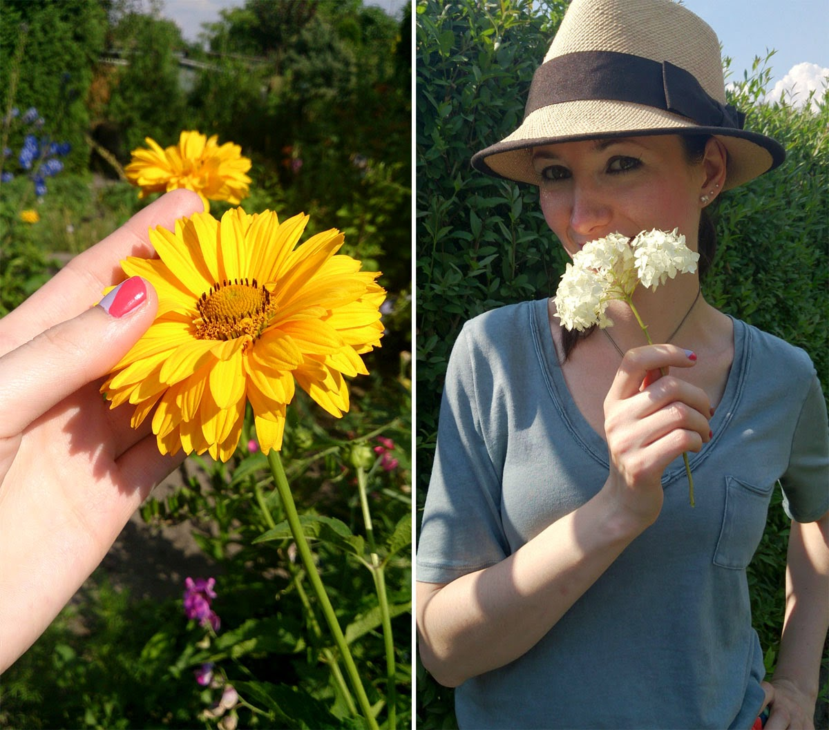 summer, flowers, awesome time