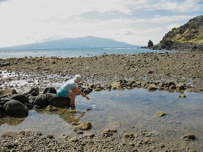 molokai movie essay The film examines the ecumenical legacy of the photo essay: kalaupapa memories, molokai, hawaii photo essay: kalaupapa memories, molokai, hawaii.