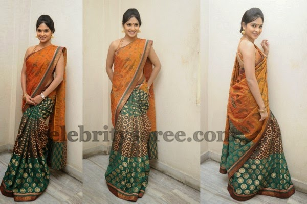 Madhumita Half and Half Saree