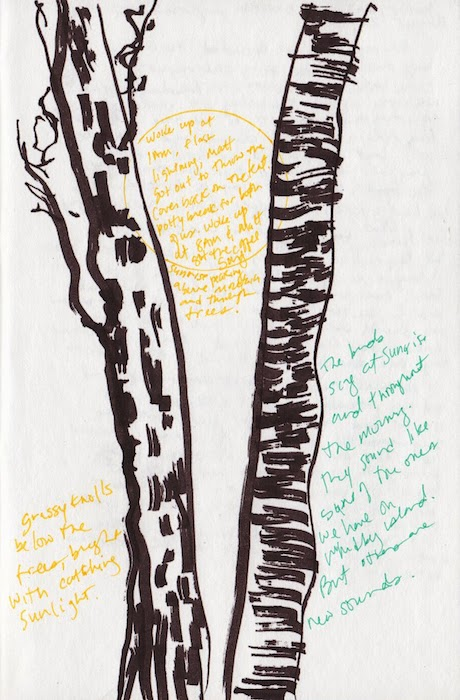 trees and notes, orcas island journal page