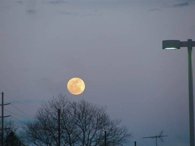 Easter-Moon-Over-Farmingdale