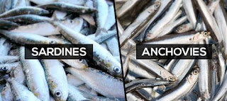 Canned Fish for Omega-3 Source