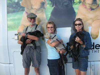 Raisers with two black and one yellow Lab puppy in front of puppy truck