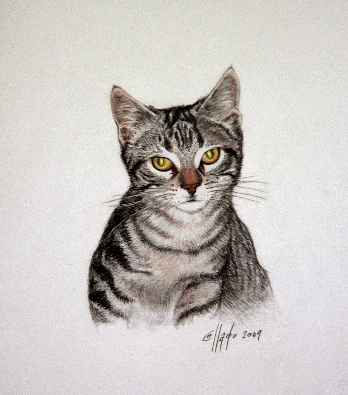 Blog de dibujo y pintura de Juan Carlos Moreno Collado: GATITO ...