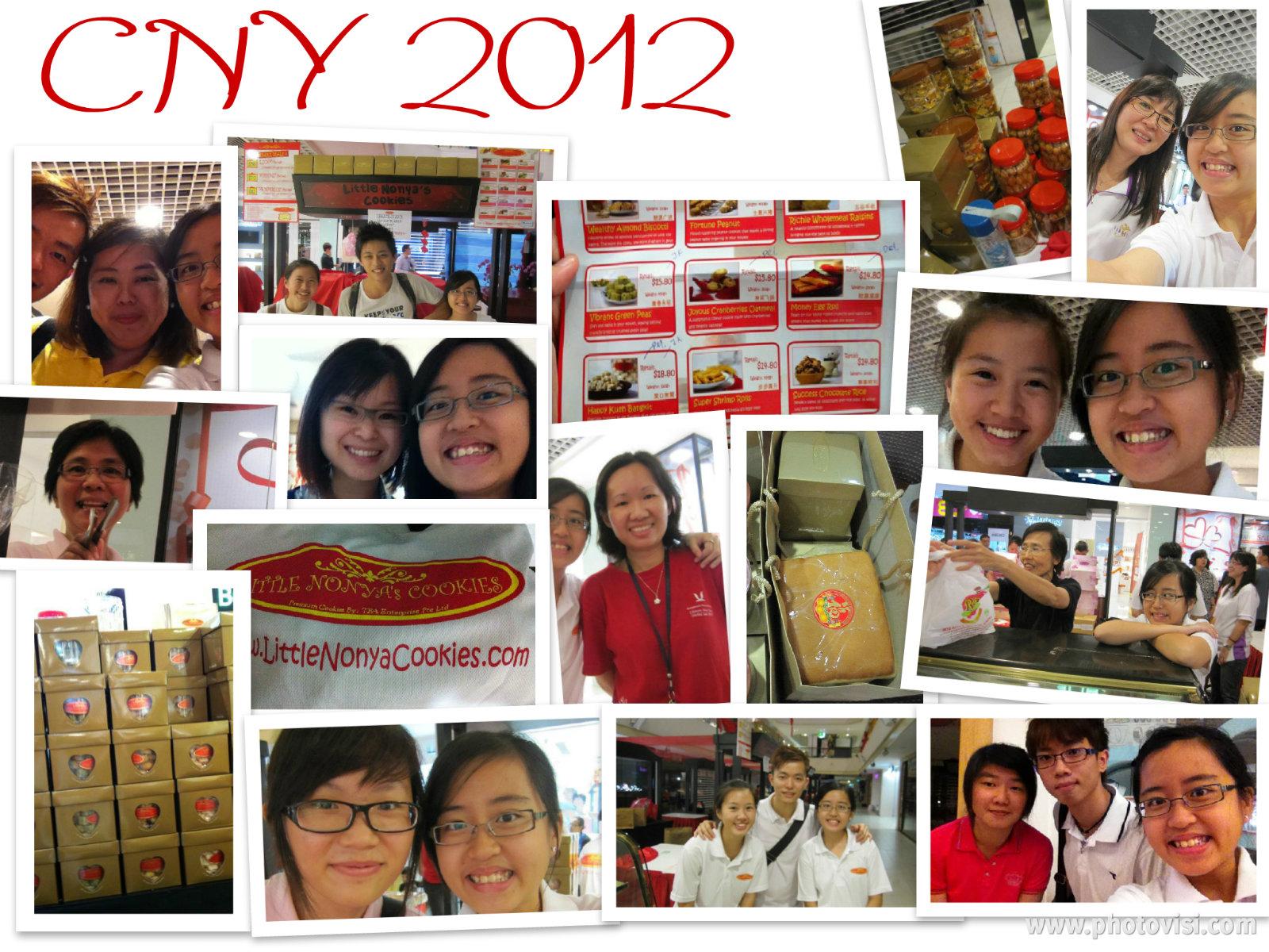 Alina Mak: General Elections 2011 - Tin Pei Ling VS Nicole