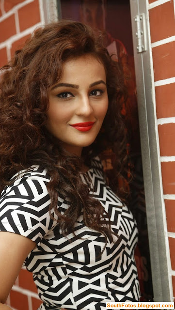 Seerat Kapoor Hot Photos