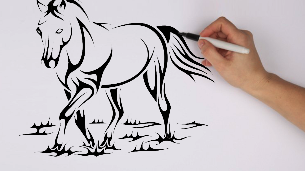 Steps For Horses : For your pictures — how to draw a horse step by