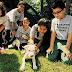 Ένα πρόγραμμα διδασκαλίας για σκύλους με παιδιά...
