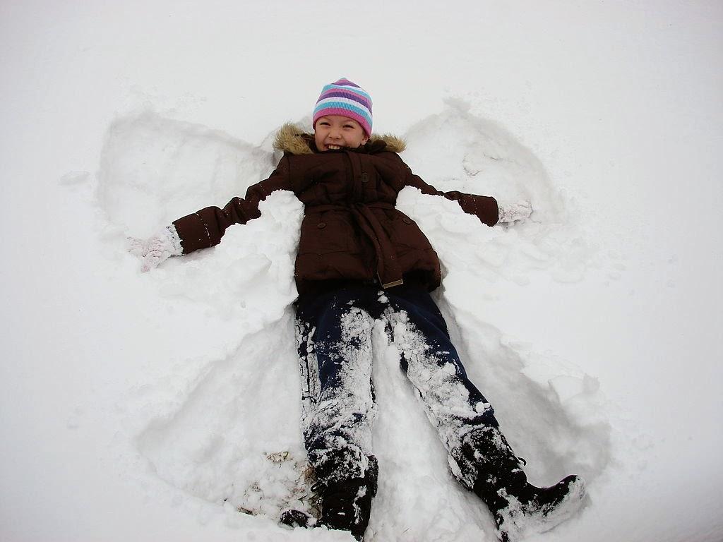 природа-США-техас-зима