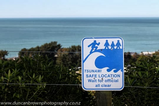 Tsunami sign, Whirinaki photograph