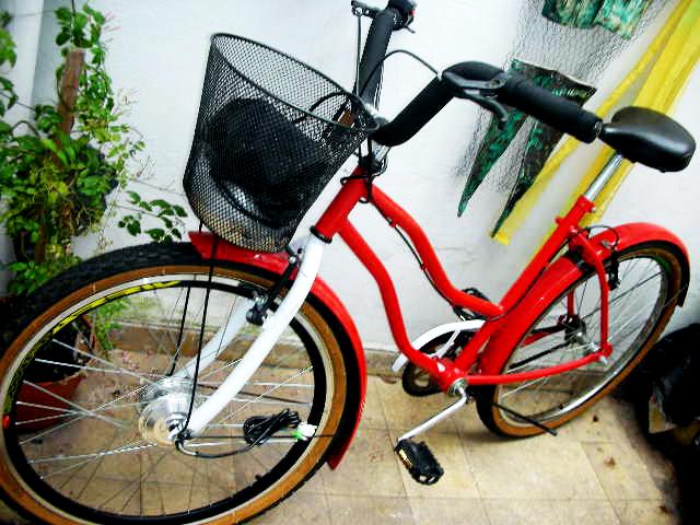 Presenta tu bici eléctrica - Página 2 DSCN7843