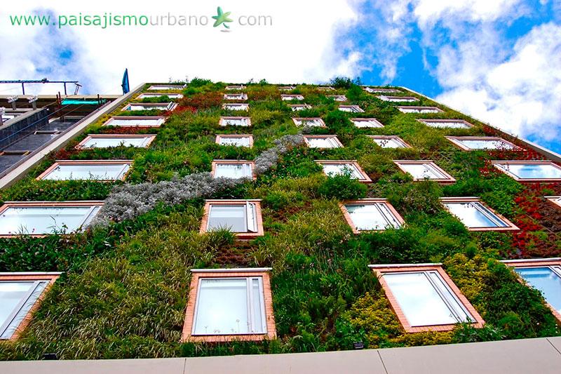 Verde Zona Sabes Lo Que Son Los Techos Verdes