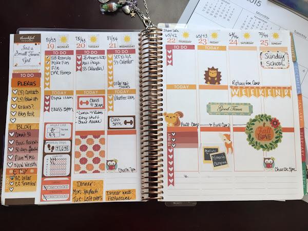 Plan with Me | Erin Condren Life Planner :  Thru November 8th