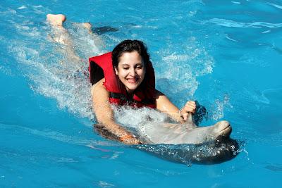 Nadar con delfines en la República Dominicana